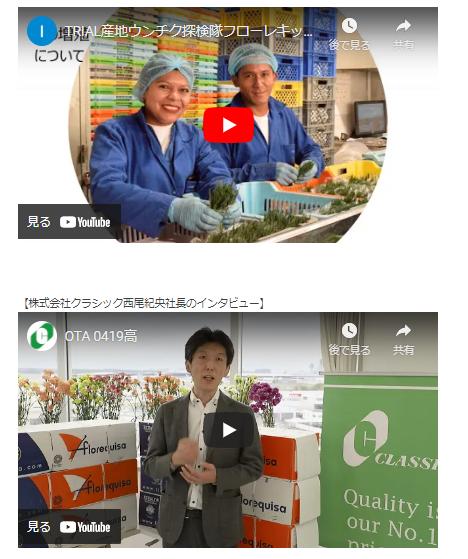 株式会社大田花き様 Webサイトにクラシックと産地をご紹介いただきました!